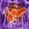 Pancreatic Cancer: FAK Inhibitors to Chemotherapy and Immunotherapy might Increase Survival Rate